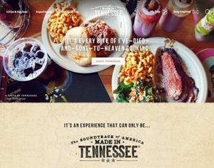 New 2017 homepage for Tennessee Vacations.