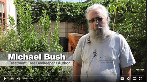 Michael Bush gives an interview on beekeeping.